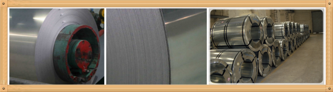 Hot selling Stainless Steel 410 409 430 201 304 coil/strip/sheet/circle 1.4301 stainless steel